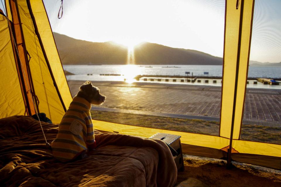 伯方島でイルカを眺めてキャンプ&念願の見近島上陸