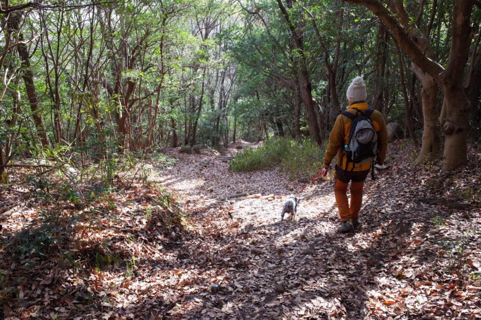 ご近所の里山「操山」で犬連れトレッキング