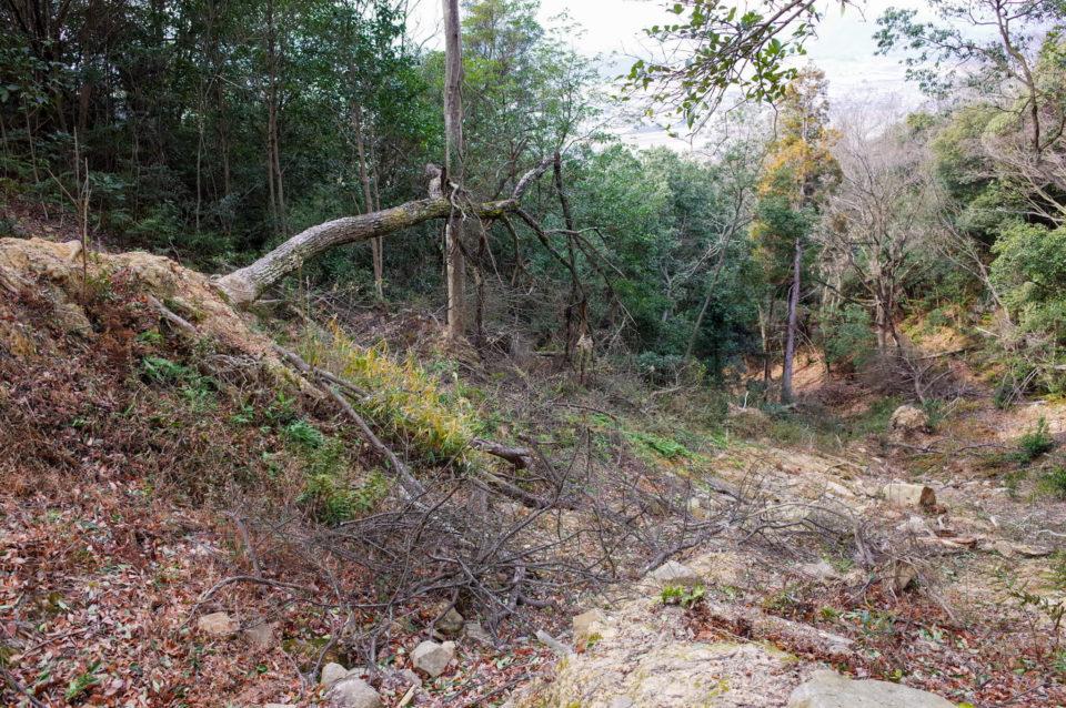 コースを横断する形で激しく土砂崩れした形跡が。