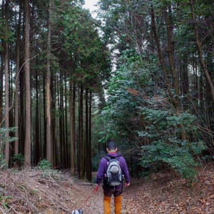 いったん下って飯盛山に向かいます