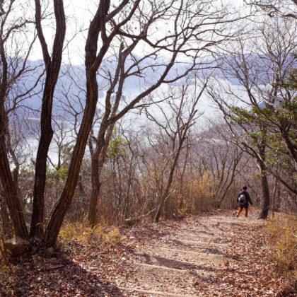 楽しい山歩きでした!