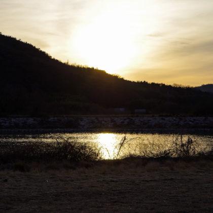 吉井川がキラキラしてた