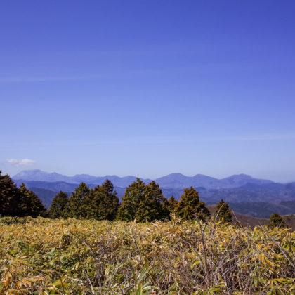 大山~蒜山三座が見えました